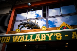 Photos du Pub le Wallaby's Angers Photos Archives photos  20160818_143906_0922